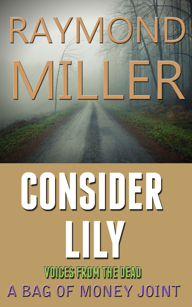 Consider Lily Book cover